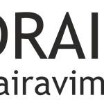 draiveris-logo-vairavimo-mokykla